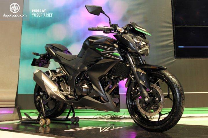 Kawasaki_Z250_19