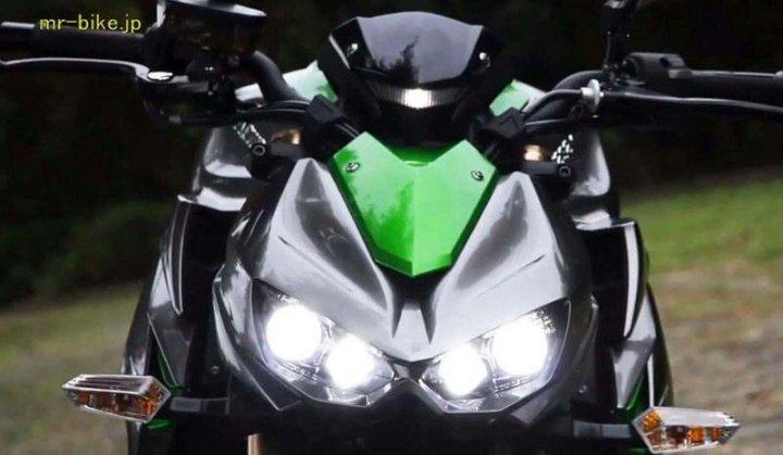 wpid-KawasakiZ10002014-6.jpg