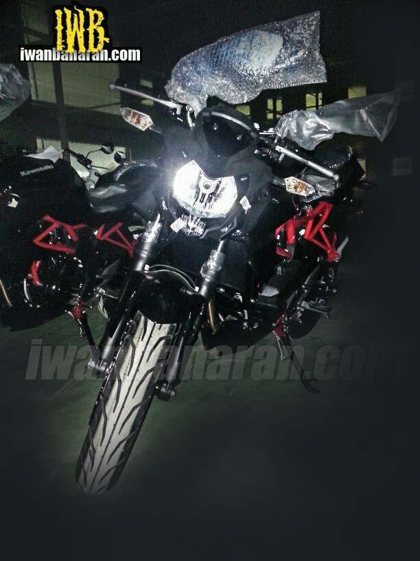 Naked 250 Kawasaki