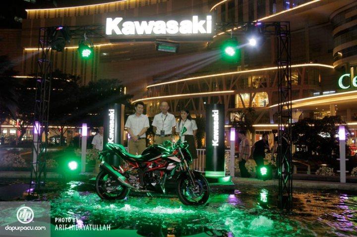 Kawasaki_Z_250_SL_001