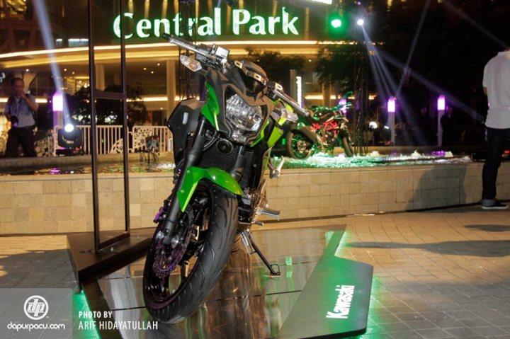 Kawasaki_Z_250_SL_004