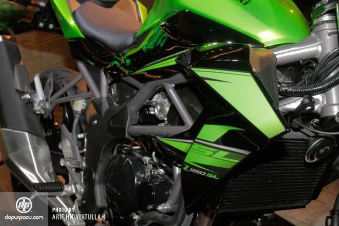 Kawasaki_Z_250_SL_008