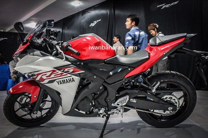 Yamaha_YZF_R25 (16)