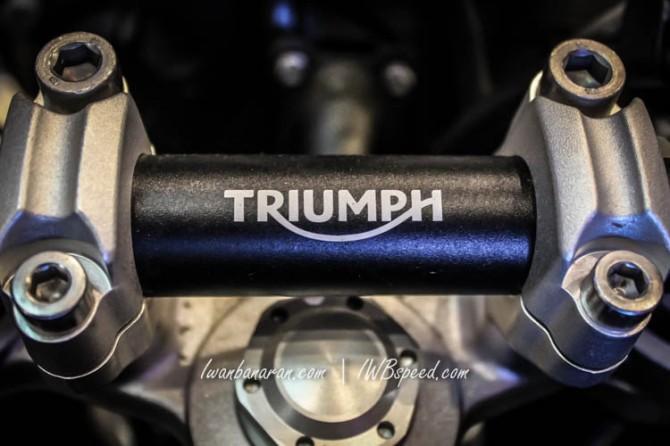 Triumph Tiger (7)
